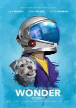 wonder-294892482-large